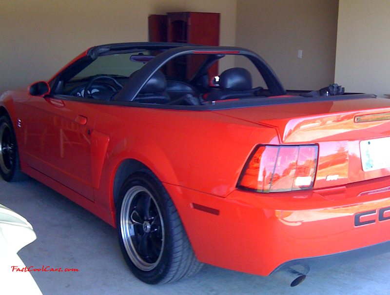 This is a 2003 10th anniversary Cobra, 6 speed manual, Supercharged
