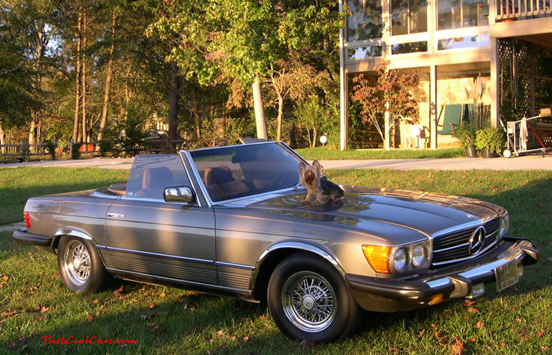 Fast Cool Cars Classifieds Cars And Parts For Sale - Cool cars 1983