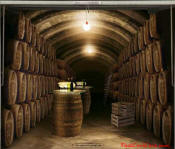 Wine or whiskey cellar, on garage door decal.